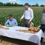 Potatoes NZ joins GIA