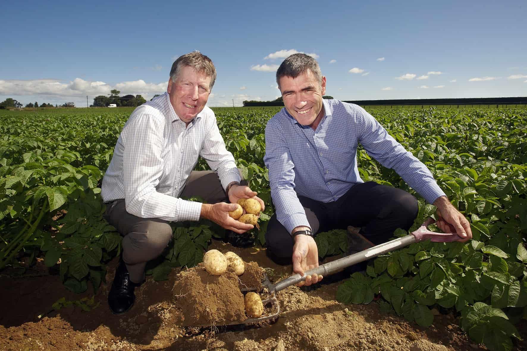 Stuart Wright and Hon Nathan Guy dig potatoes